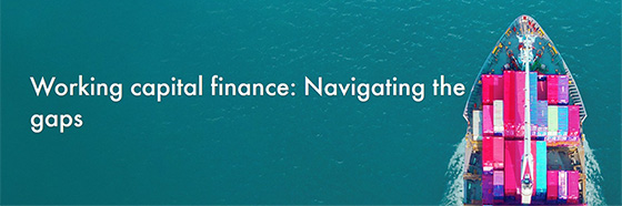 Working capital finance: Navigating the gaps