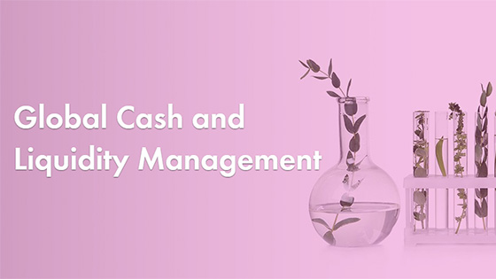 Global Cash and Liquidity Management