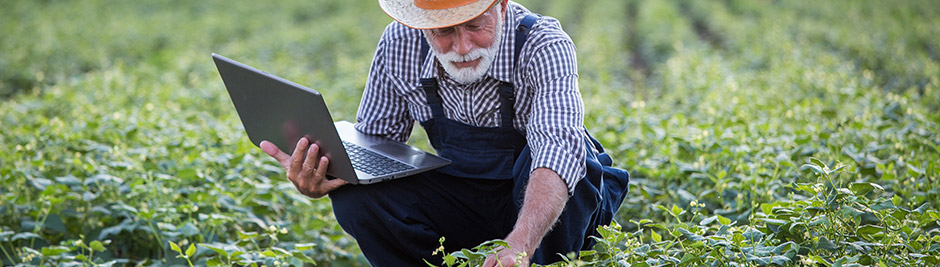 Farmer in field with a laptop