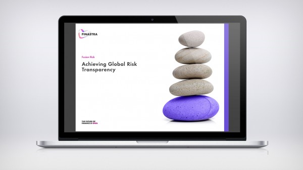 Achieving Global Risk Transparency (Brochure)