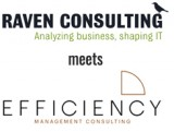 Raven Consulting meets Efficiency Consulting Group